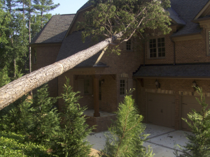 Storm Damage Causes Fallen Tree On Roof